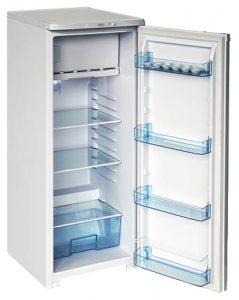 Холодильник для дачи Бирюса R110CA