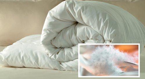 Какое одеяло лучше выбрать в 2020 году