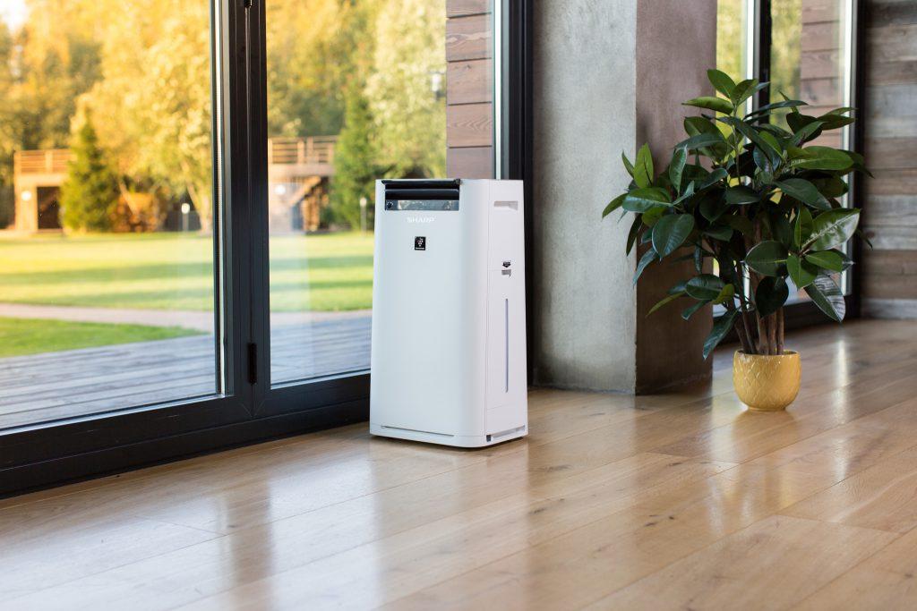 Лучшие очистители воздуха для квартиры или дома